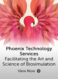 Phoenix Technology Services brochure