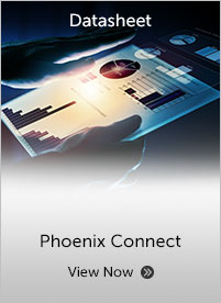 Phoenix Connect Datasheet